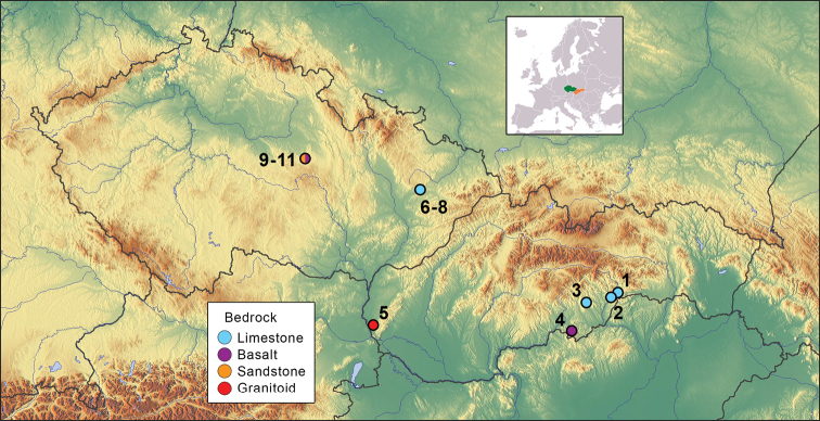 Subterranean biodiversity and depth distribution of myriapods in forested scree slopes of Central Europe.
